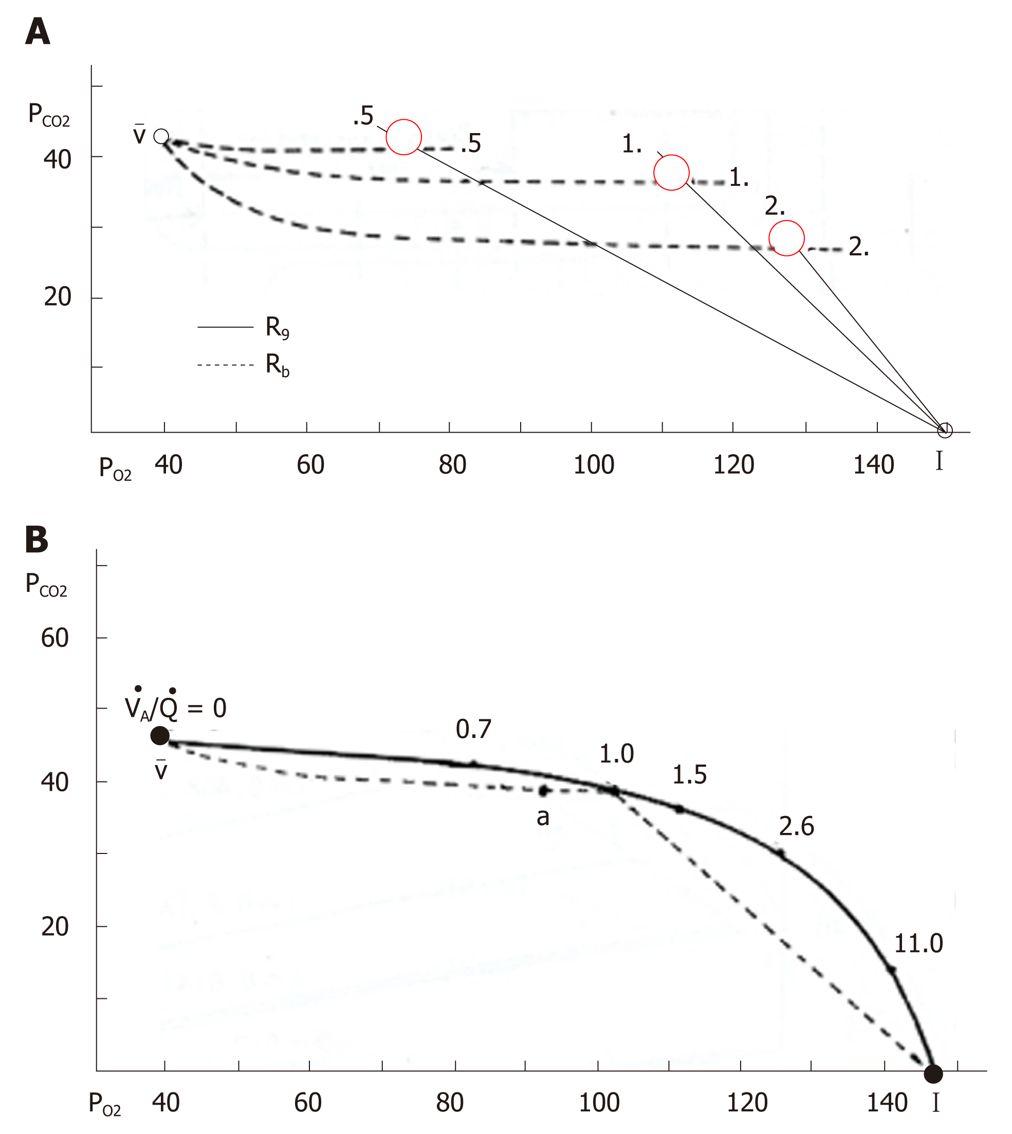 hight resolution of figure 9 o2 co2 diagram and ventilation perfusion line a o2 co2 diagram in which solid and dotted lines indicate gas r lines and blood r lines