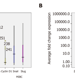 figure 5 box plot representation of quantitative expression profile of catenin and its target genes cyclin d1 snail and slug in a cohort of 90 urinary  [ 3740 x 1264 Pixel ]
