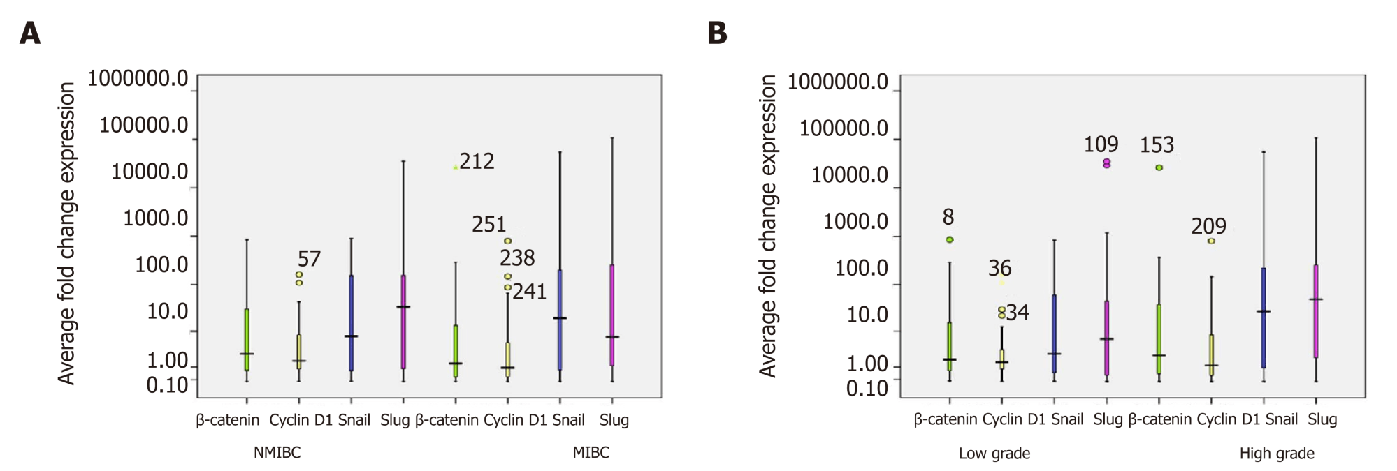 hight resolution of figure 5 box plot representation of quantitative expression profile of catenin and its target genes cyclin d1 snail and slug in a cohort of 90 urinary