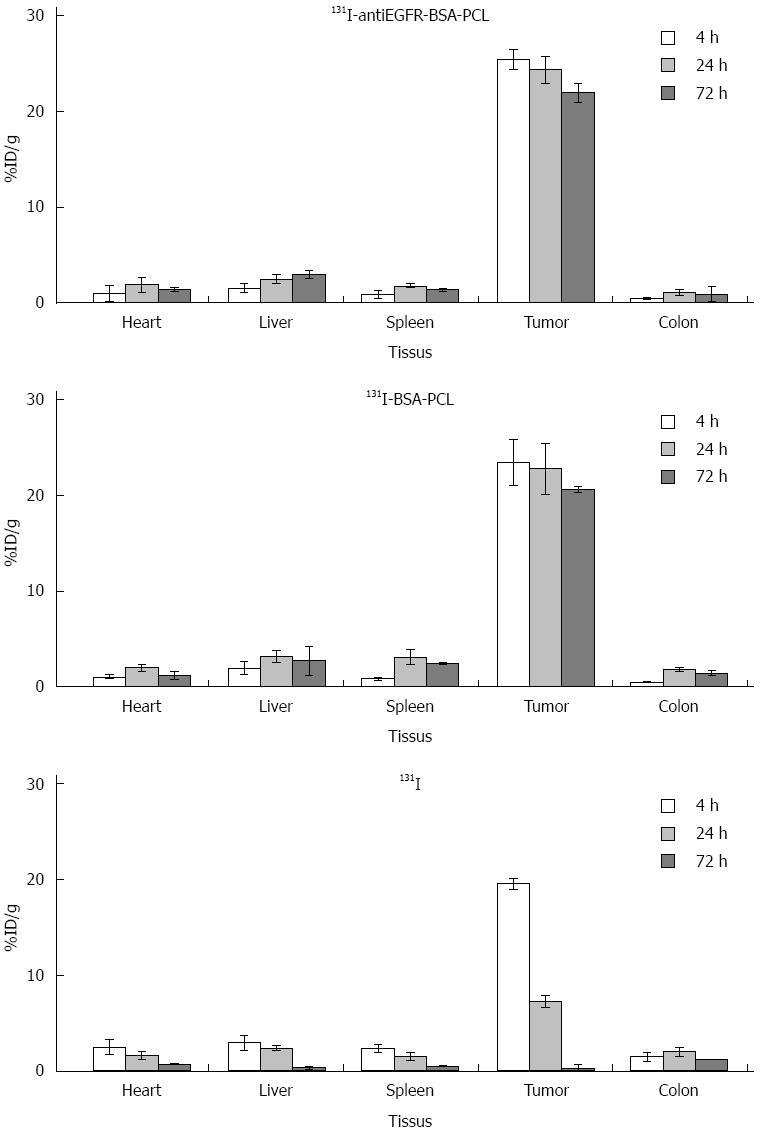 Evaluation of therapeutic effectiveness of 131I-antiEGFR
