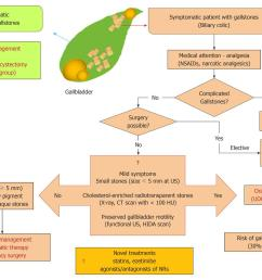 therapy of gallstone disease what it was what it is what it will be gallbladder pain diagram [ 1378 x 982 Pixel ]