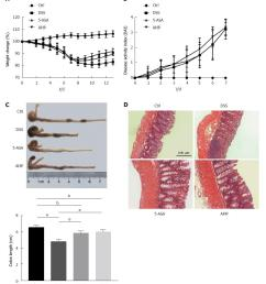 figure 1 ampelopsis grossedentata improved dextran sulfate sodium induced inflammatory response in acute colitis mice a body weight was measured every day  [ 1074 x 1217 Pixel ]