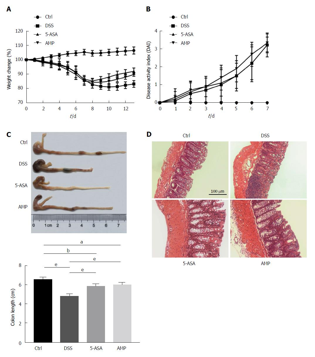 hight resolution of figure 1 ampelopsis grossedentata improved dextran sulfate sodium induced inflammatory response in acute colitis mice a body weight was measured every day