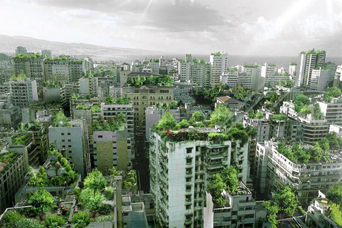 Beirut-Wonder-Forest