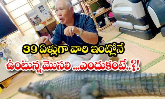 TeluguStop.com - The Crocodile That Has Been Living In Their House For 39 Years Because