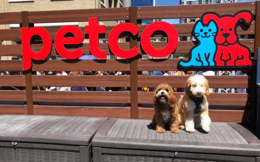 Petco beats IPO share price