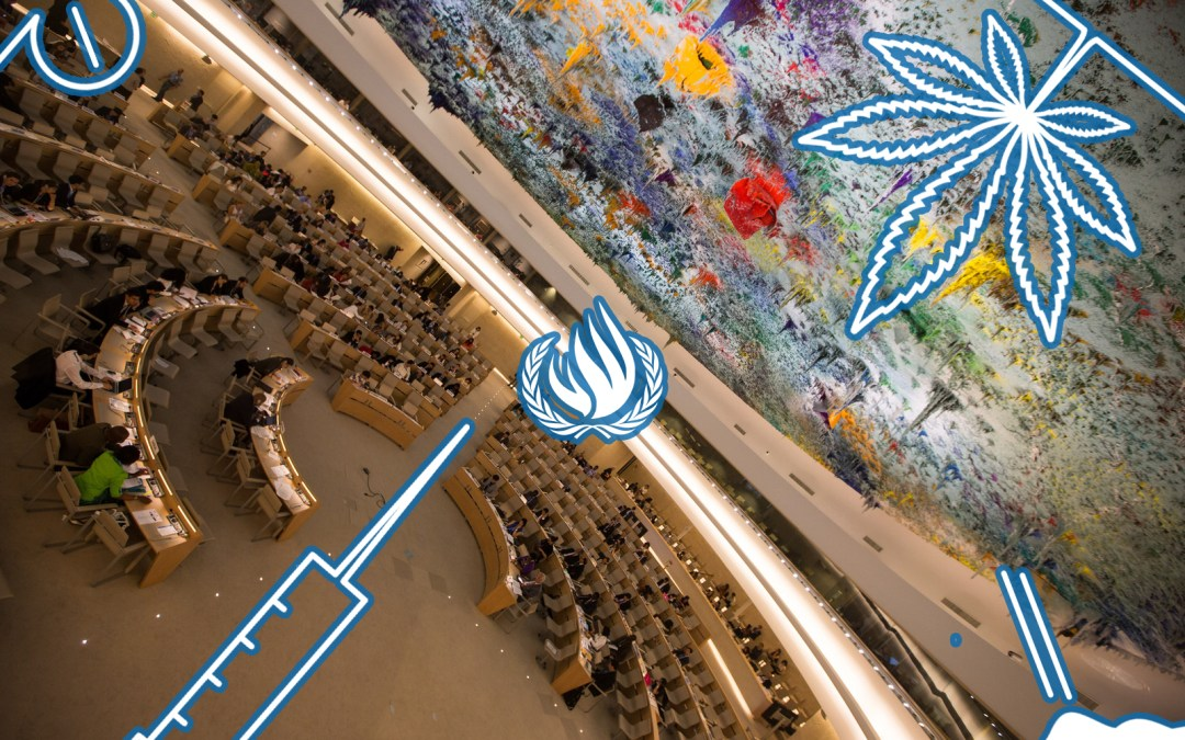 Major shift in global drug policies: the Human Rights Council catches up with the Commission on Narcotic Drugs