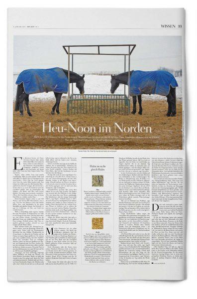 Fabian Franke Journalist Reporter Heuknappheit Pferde Duerre Reportage ZEIT