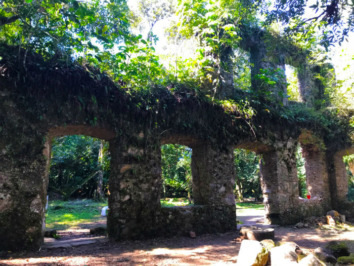Ruinas do engenho em Lagoinha 2 - Foto Reginaldo Pupo - Travel for Life.JPG