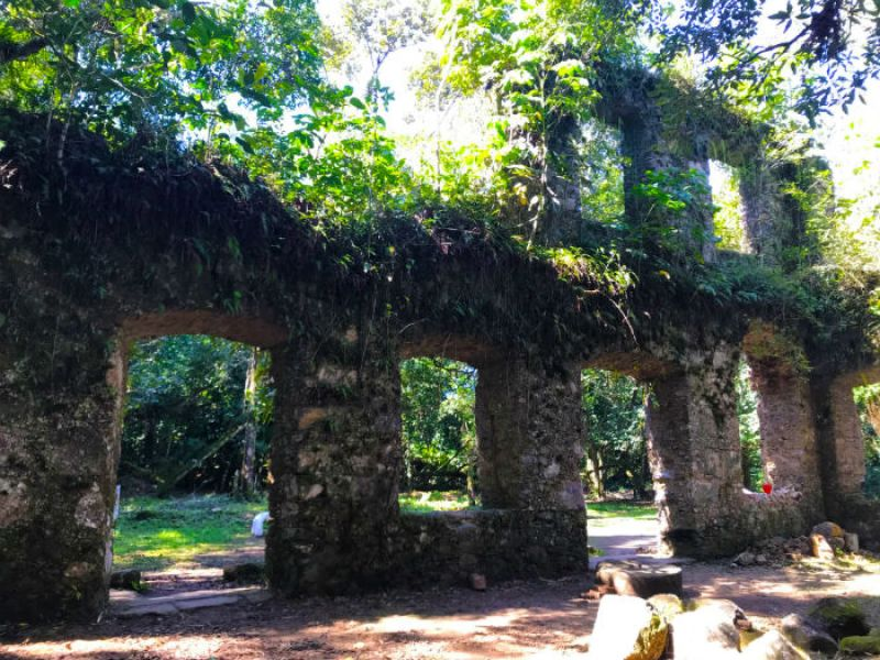 Ruinas do engenho em Lagoinha 2 - Foto Reginaldo Pupo - Travel for Life.JPG