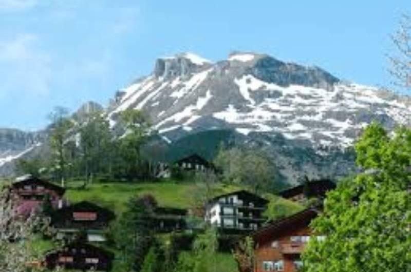 Swiss Airlines retorna voos entre Brasil e Suíça