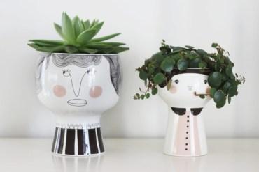 Vasinhos divertidos de Meyer-Lavigne