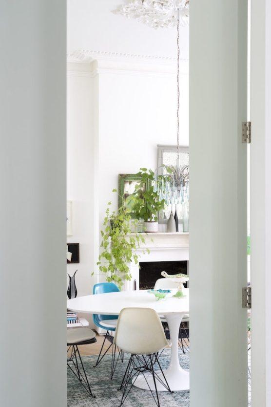 Lugar de plantas é dentro de casa 9