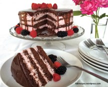 Chocolate Cake with Raspberry Mousse