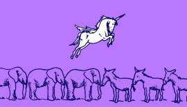 Unicorn politics