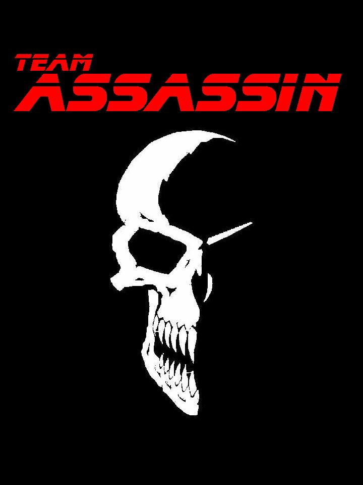 Team Assassin: the new American logo