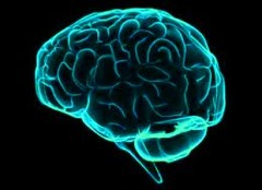 Your brain on QE