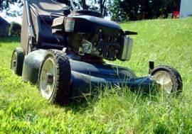 Lawnmower vs grass