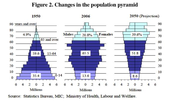 Snapshots of age distribution in an aging society