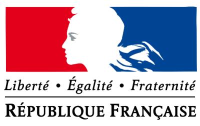 France's Fifth Republic