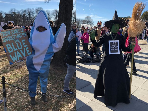 Women's March - in costumes