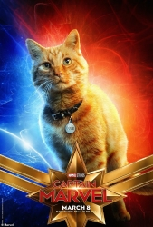 "Goose in ""Captain Marvel"""
