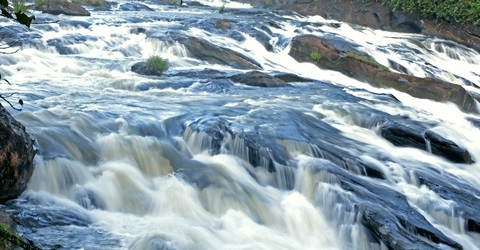 Rapids on the river - dreamstime_15084499