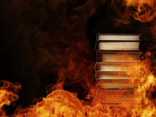 Burning books - Dreamstime-44966410