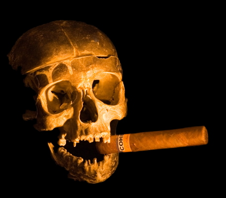 Skull with Cigar - AdobeStock - 3899264
