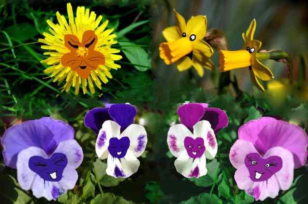 Alice flowers low res