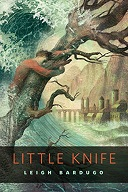 Little Knife Book Cover