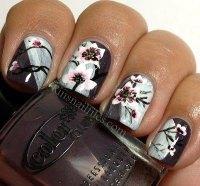 Elegant Chinese Nail Art Designs & Ideas 2014 | Fabulous ...