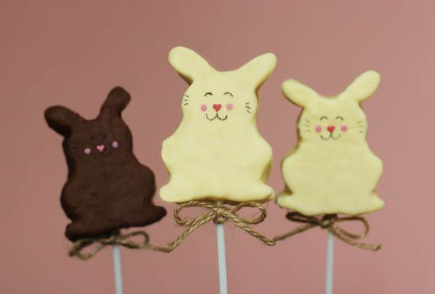caramel-chocolate-marshmallow-bunny-pops-recipe-9