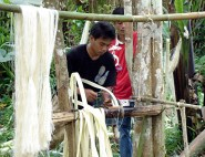 drying stripped abaca