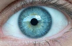 iridologie naturopathie