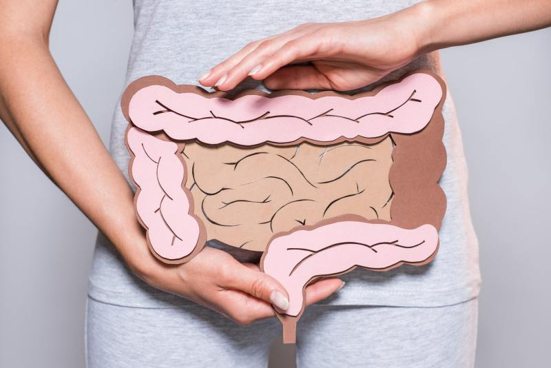 partial view of woman holding paper made large intestine on grey background
