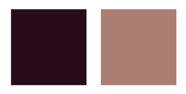 Swatches of cool and warm brown