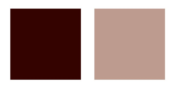 Swatches of deep and light brown