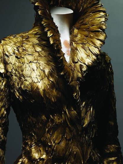 gold painted feathers