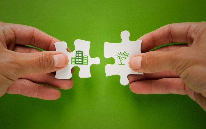 green brands: eco friendly companies to learn from