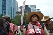 Ayotzinapa 25 S 2015 Mexico City (54) (Small)