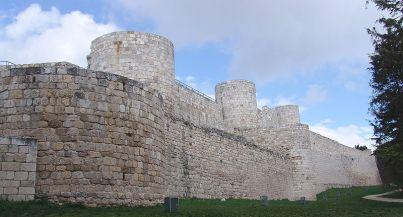 Zamek w Burgos