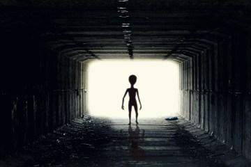 Ubezpieczenie od porwania UFO