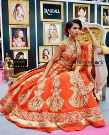 National Asian Wedding Show India Fashion Week London (00)