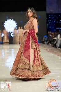 Aisha Imran (1)