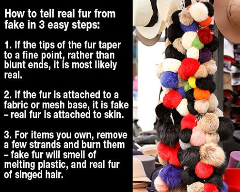 How to tell real fur from fake in 3 simple steps