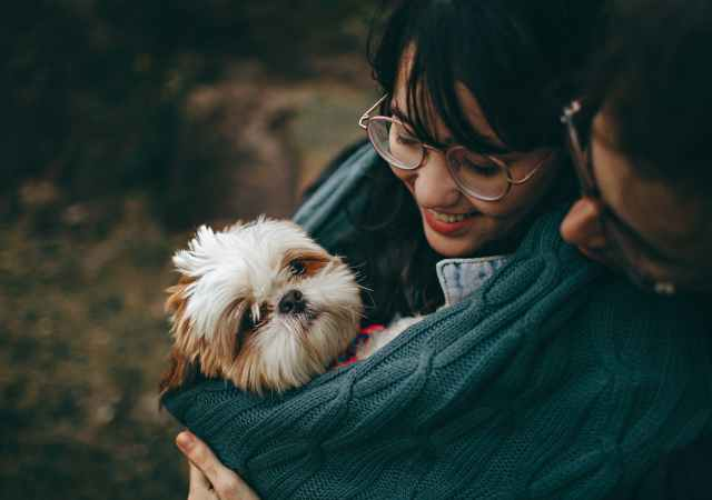 It takes 6 months to fall in love with a partner, but just 30 minutes with your pet