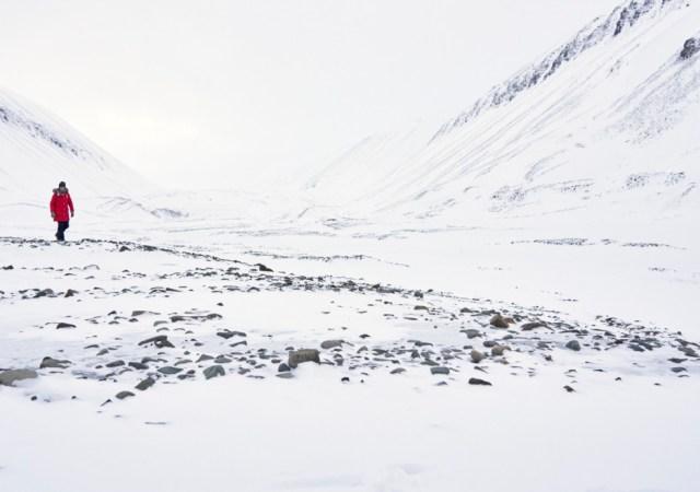 Svalbard icy coast heidi sevestre