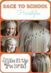 school hairstyles - snake