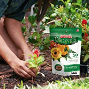 Amazon: 50 Spikes Jobe's Organics All Purpose Fertilizer Spikes $4.14...